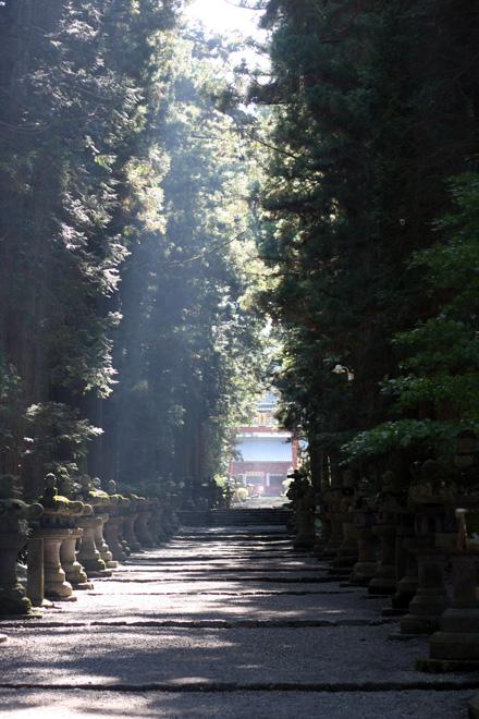 081007浅間神社.jpg